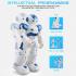 Robô Bipede JJRC R2 Cady Wida - 1434_5_H.png